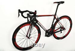 50 Petit Stradalli Carbon Fiber Wheelset Bitonto Shimano Ultegra 6800 Road Bike